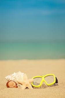Muszla i gwiazda na piaszczystej plaży na tle błękitnego morza i nieba
