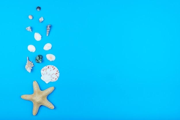 Muszle i gwiazdy na pięknym turkusowym tle. miejsce na tekst