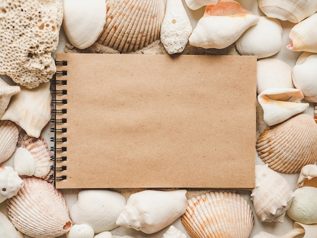 Muszle leżące na piasku. piękna karta.