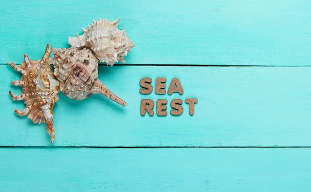 Muszle na niebieskiej powierzchni drewnianych z napisem reszta morza.