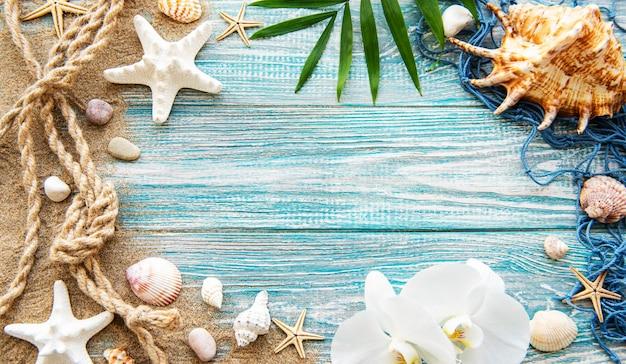 Muszle na piasku. morze letnie wakacje ściana z miejscem na tekst. widok z góry