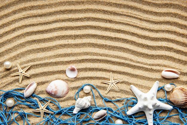 Muszle na piasku. tabela wakacji letnich morze z miejscem na tekst. widok z góry