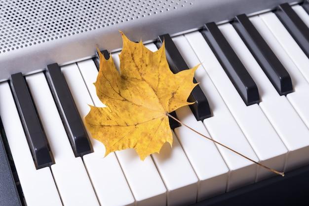 Muzyczne klawisze fortepianu i jesienne liście