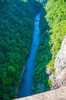 Na dnie kanionu płynie szybka rzeka tara.