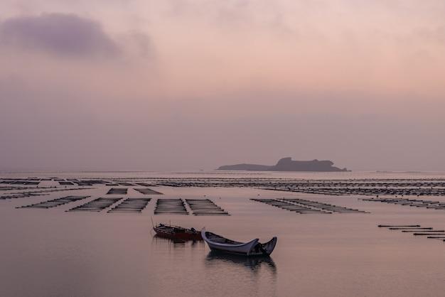 Na farmie wodorostów przed wschodem słońca rano znajdują się rzędy wodorostów i łodzie