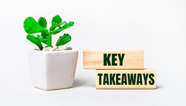 Na jasnej powierzchni roślina w doniczce i dwa drewniane klocki z napisem key takeaways