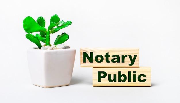 Na jasnym tle roślina w doniczce i dwa drewniane klocki z napisem notary public