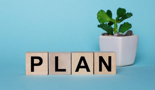 Na niebieskiej powierzchni, na drewnianych kostkach w pobliżu rośliny w doniczce jest napisany plan
