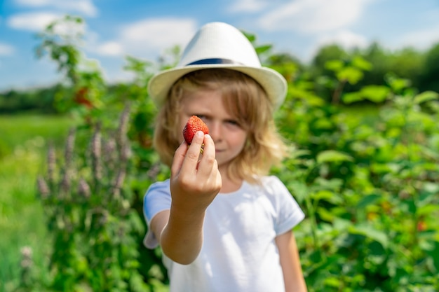 Na pierwszym planie truskawka trzymana przez chłopca, którego twarz jest nieostra