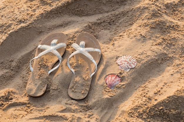 Na plaży na piasku leżą kapcie i muszle