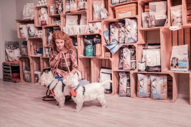 Na psiej smyczy. kręcona rudowłosa kobieta w kwadratowej sukience, trzymająca swoje dwa urocze psy na psiej smyczy
