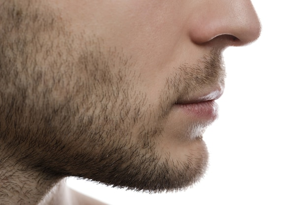 Na rysunku w zbliżeniu przedstawiono męską brodę, włosie i usta.