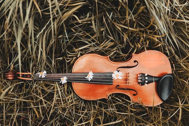 Na trawie leżą skrzypce z kwiatami rumianku. muzyka instrumentów strunowych. zdjęcie wysokiej jakości