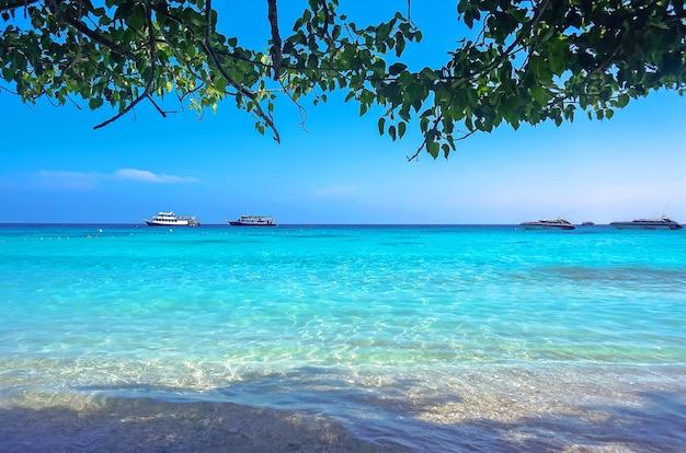 Na wyspie w cieniu zielonego drzewa. widoki na biały piasek i wodę prozrachnogo