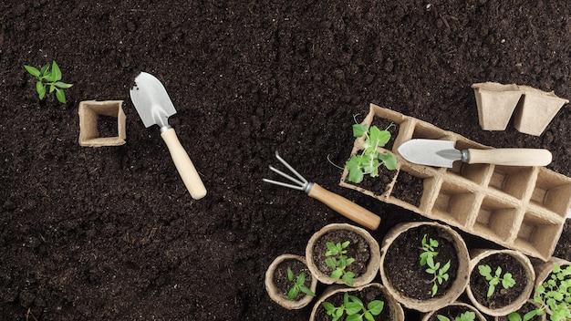 Na ziemi są sadzonki torfu i narzędzia ogrodowe. widok z góry. skopiuj miejsce.