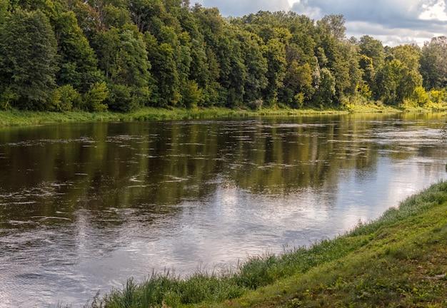 Nabrzeże rzeki niemen