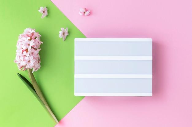 Nadchodzi wiosna, urodziny i inne święta świąteczny plakat, karta. na różowym zielonym tle lightbox i różowym hiacyntowym kwiatku