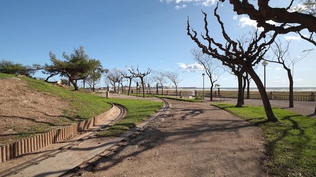 Nadmorska promenada przy plaży z widokiem na morze w oddali i drzewa o opadłych liściach zimą w hiszpanii.