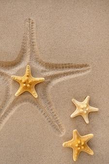 Nadruk rozgwiazdy na piasku. pojęcie letniego wypoczynku i relaksu.