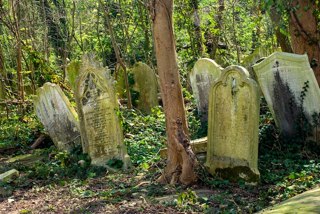 Nagrobki na cmentarzu nunhead w londynie w ciągu dnia