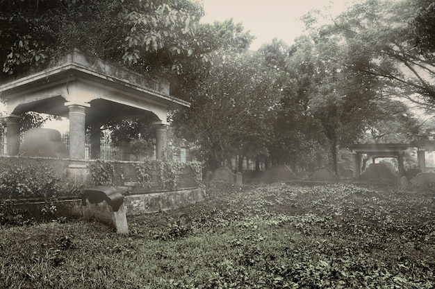 Nagrobki na cmentarzu z dramatycznym tłem sceny. koncepcja halloween