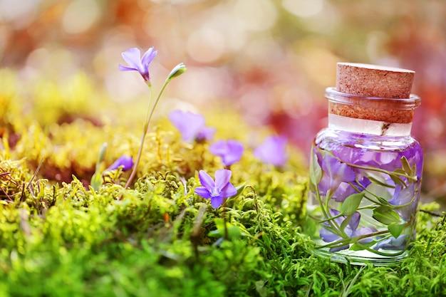 Nalewka z leśnych traw i kwiatów w szklanej butelce w mchu i kwiatach