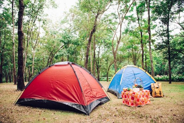 Namiot kempingowy i akcesoria piknikowe pod drzewem w wschód słońca rano.