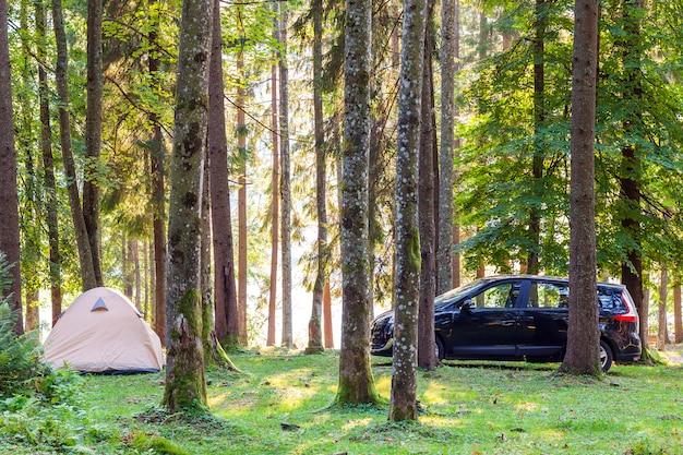 Namiot kempingowy i samochód w zielonym lesie wiosną słoneczny poranek z mgły mgły wśród drzew. koncepcja rekreacji.