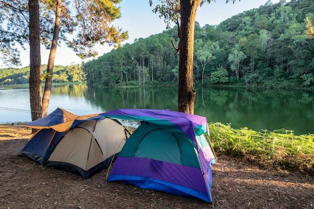 Namiot kempingowy w lesie sosnowym na zbiorniku o zachodzie słońca, pang oung, mae hong son, tajlandia