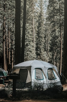 Namiot na kempingu w lesie