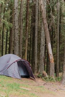 Namiot na łące w lesie