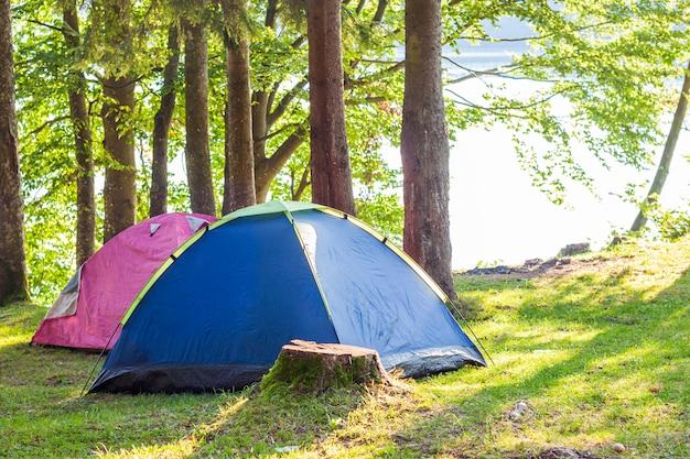 Namioty kempingowe w zielonym lesie
