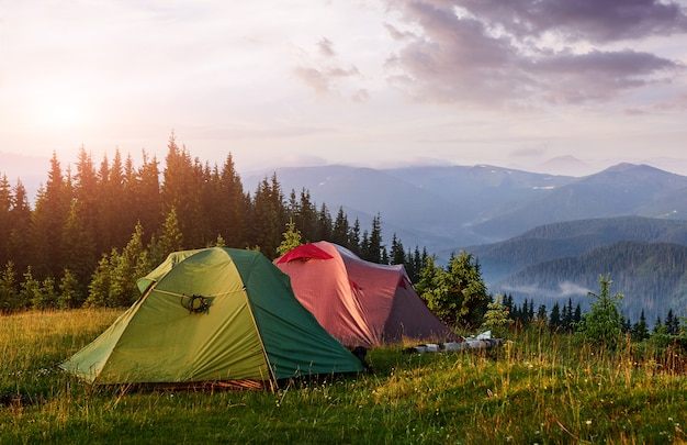 Namioty turystyczne są w zielonym mglistym lesie w górach o zachodzie słońca. karpaty ukrainy europa.