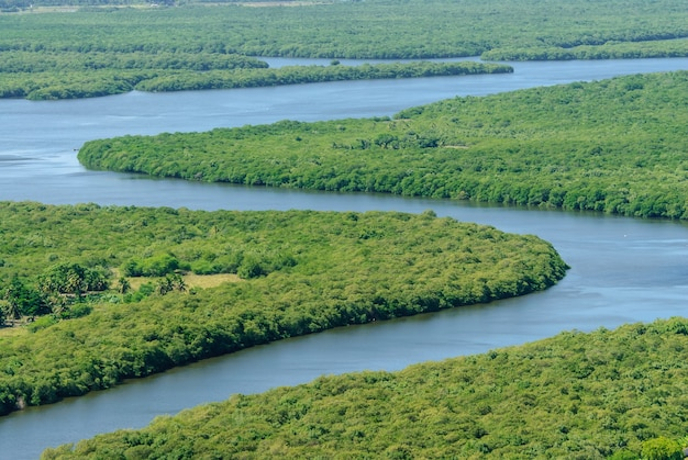 Namorzynowe w rzece paraiba, joao pessoa, paraiba, brazylia w dniu 10 marca 2010 r. widok z lotu ptaka.