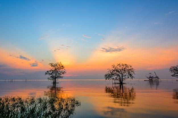 Namorzynowi drzewa w jeziorze z kolorowym niebem na wschodzie słońca przy pakpra wioską, phatthalung, tajlandia
