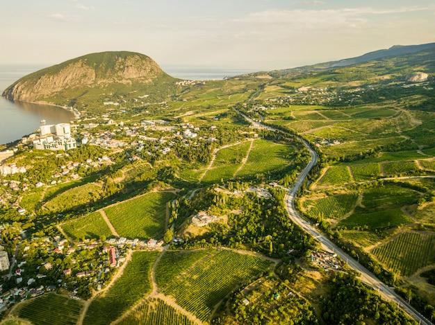 Napowietrzne plantacje w górach w sezonie letnim w pobliżu wioski