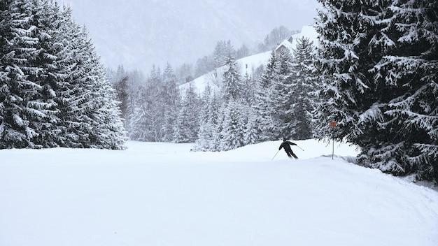 Narciarz jadący przez porośnięte drzewami stoki ośrodka narciarskiego alpe d huez we francuskich alpach