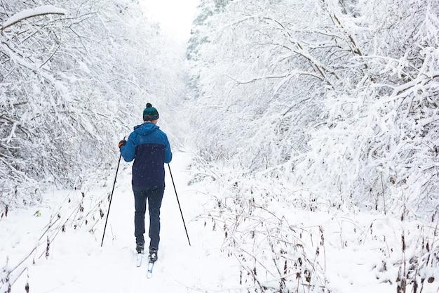 Narciarz w wiatrówce i czapce z pomponem z kijkami narciarskimi w ręku, plecami na zaśnieżonym lesie. narciarstwo biegowe w zimowym lesie, sporty na świeżym powietrzu, zdrowy tryb życia.