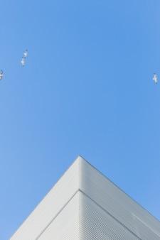 Narożnik budynku z ptakami