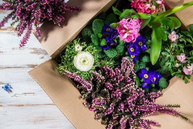 Narzędzia ogrodnicze i kwiaty w doniczkach
