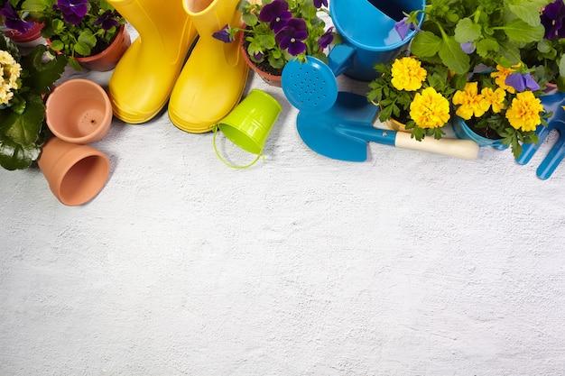 Narzędzia ogrodnicze, kwiaty i konewka na chodniku. wiosenny ogród działa koncepcja. układ z wolną przestrzenią przechwyconą z góry. widok z góry, płaski układ.
