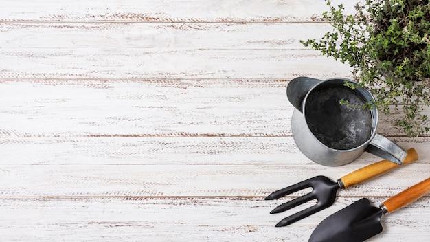 Narzędzia ogrodnicze rośliny z bliska z miejsca na kopię