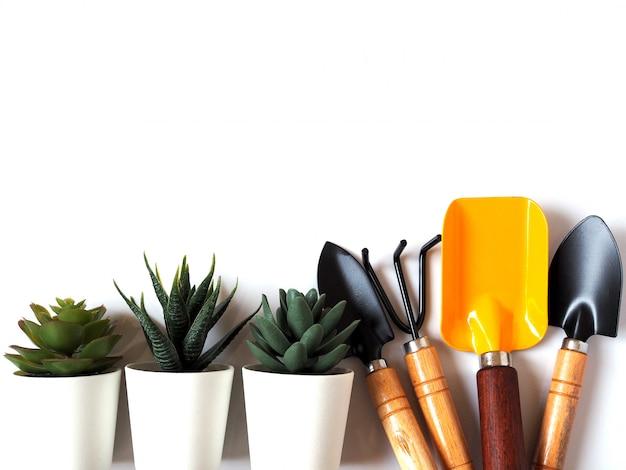 Narzędzia ogrodnicze zestaw z łopatą, łopatą i kaktusa w doniczce na białym tle z miejsca kopiowania.