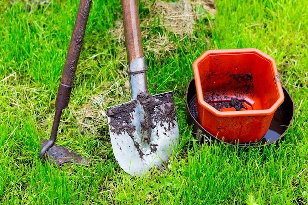 Narzędzia rolnicze (łopata, rąbać, wiadro) na zielonej trawie po deszczu. pracuj na łóżku