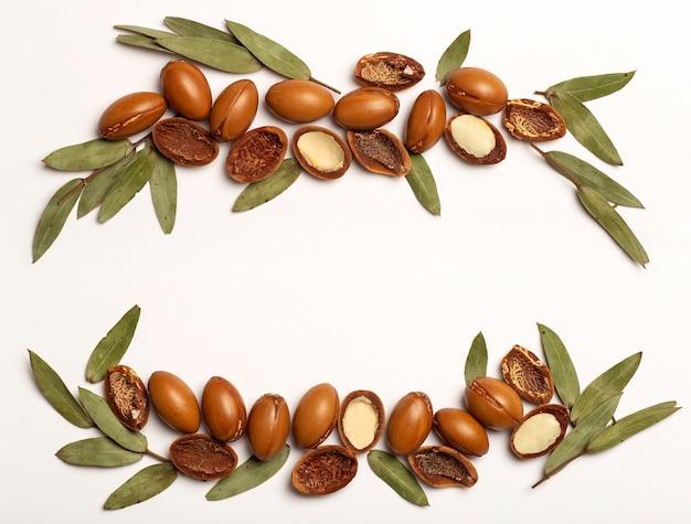 Nasiona arganowe wyizolowane na białym tle ramki orzechy oleju arganowego z kosmetykami roślinnymi i naturalnym olejem...