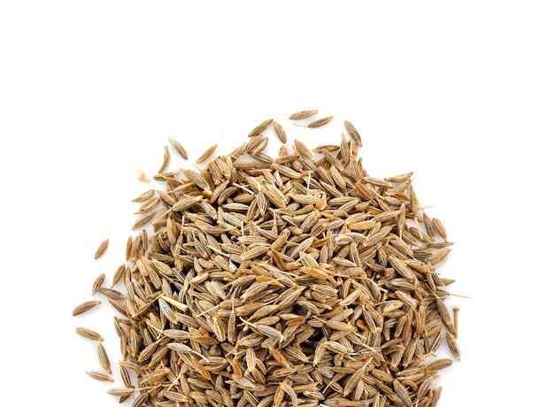 Nasiona kminku