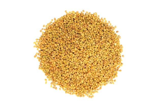 Nasiona melilotus officinalis na białym tle, widok z góry. kupie nasiona koniczyny słodkiej na białym tle. nasiona słodkiej koniczyny żółty, biały na białym tle, widok z góry.
