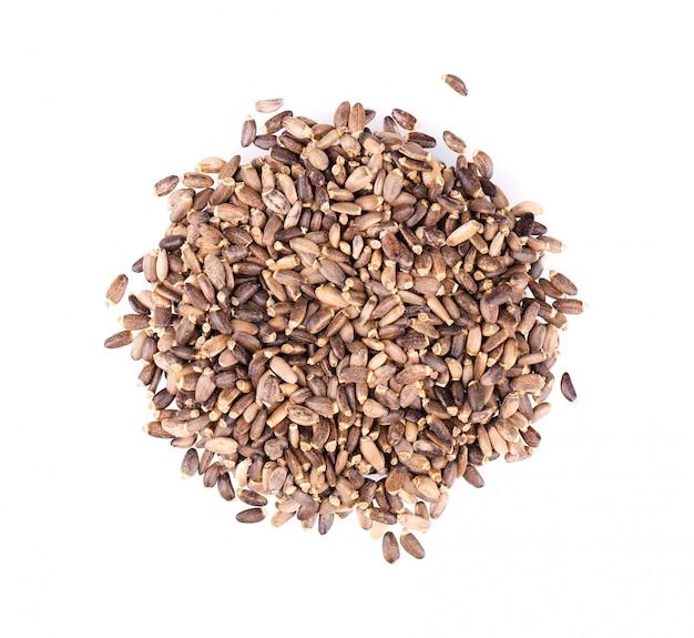Nasiona ostropestu, na białym tle. silybum marianum, scotch thistle lub marian thistle. zbliżenie. widok z góry.