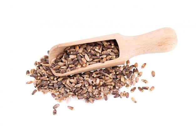 Nasiona ostropestu w drewnianą łyżką, na białym tle. silybum marianum, scotch thistle lub marian thistle. zbliżenie.