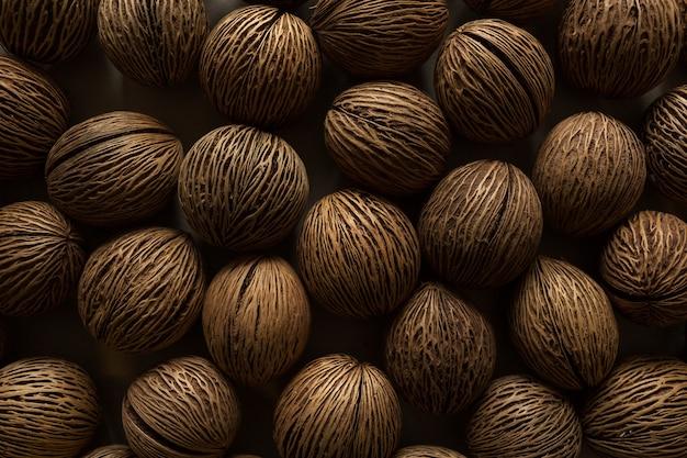 Nasiona ponga. owoc cerbera odollam.